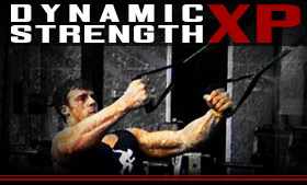 Dynamic Strength XP