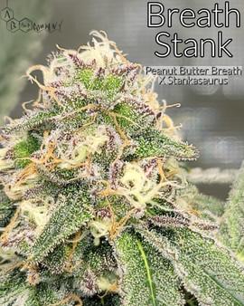 Breath Stank