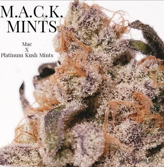 M.A.C. Mints