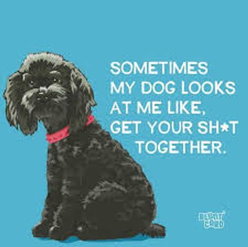 Funny Napkins - Sometimes My Dog