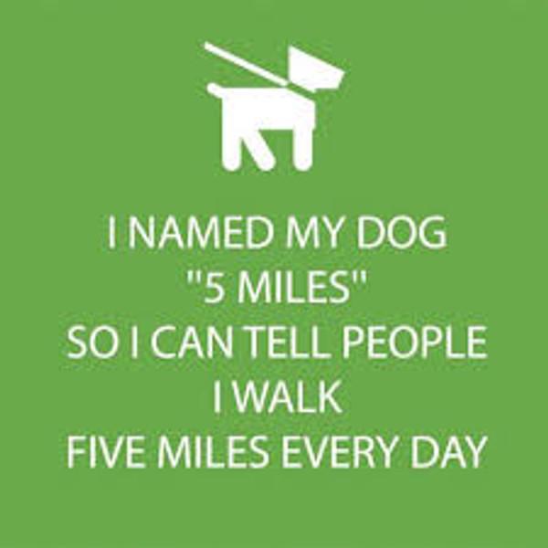 Funny Napkins - 5 Miles
