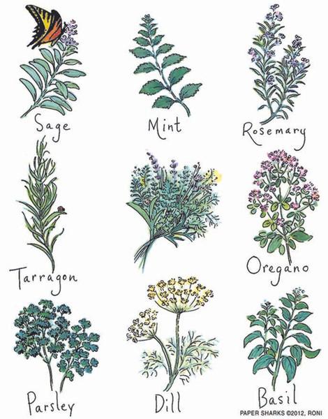Flour Sack Towel - Herbs