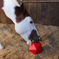 Tubtrugs Dripfeed Ball help to reduce boredom in your horse.