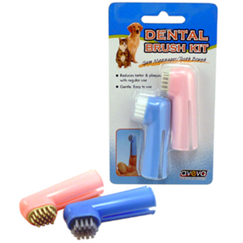 Dental Brush Kit