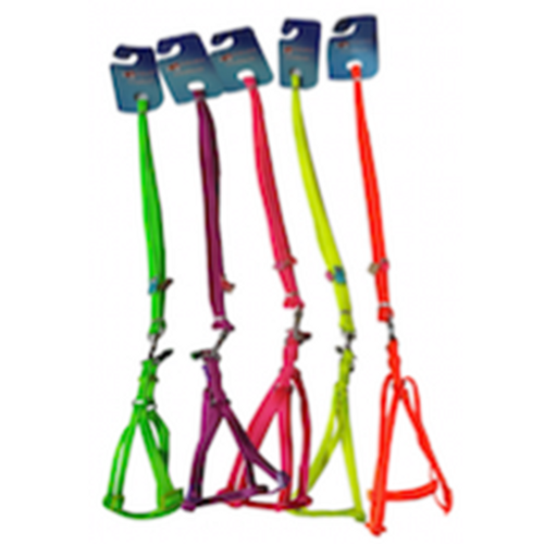 Fluorescent Puppy Harness & Lead Set