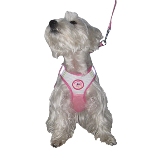 Mesh Body Harness for Small Dogs
