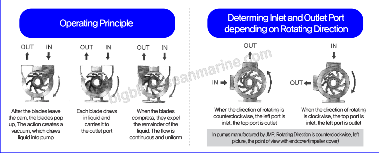 impeller-operating-principle-wm-.png