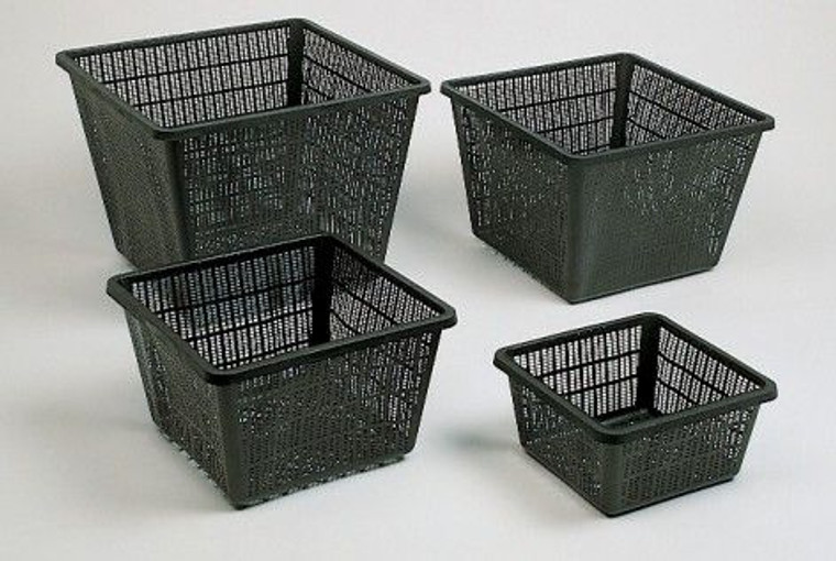 Aquatic Basket 25cm Square