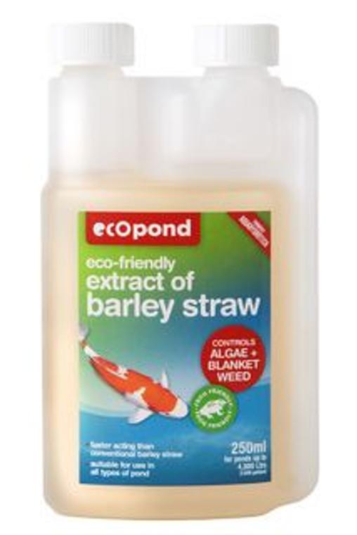 Extract Of Barley Straw 250ml