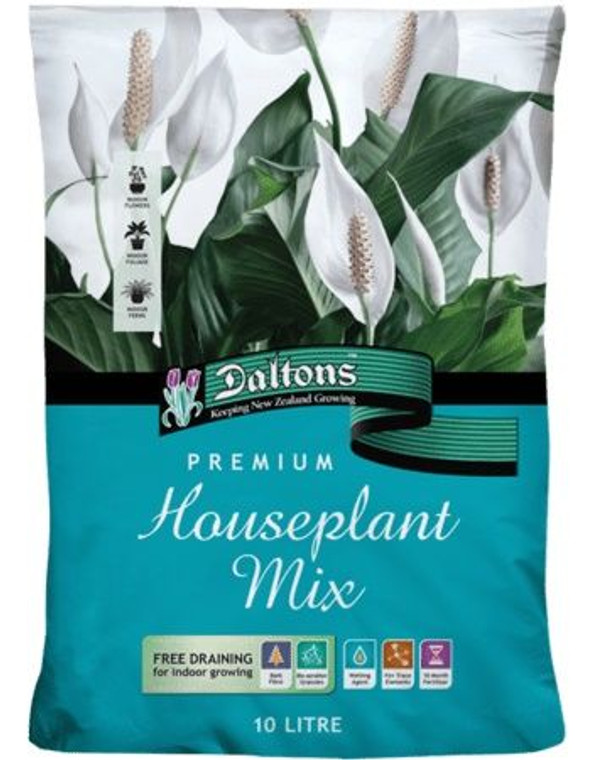 10L Daltons Premium Houseplant