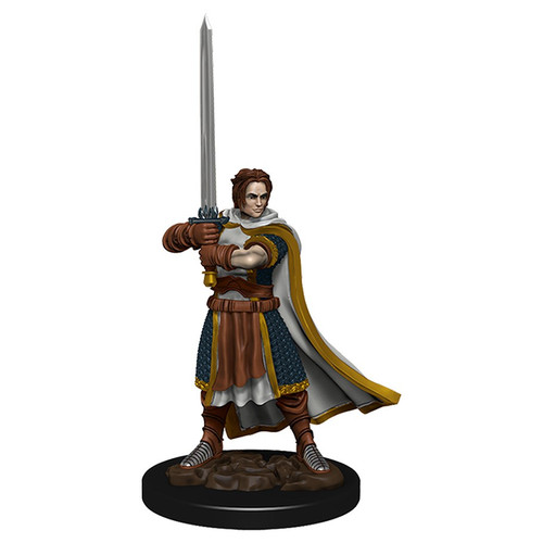 RPG Miniatures: Adventurers - Human Cleric Male - Icons Of The Realms Premium Figure