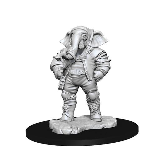 RPG Miniatures: MTG Miniatures - Unpainted Minis: Qunitorius, Field Historian