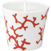 Candle Pot, 3 2/7 inch | Raynaud Menton Cristobal - Coral