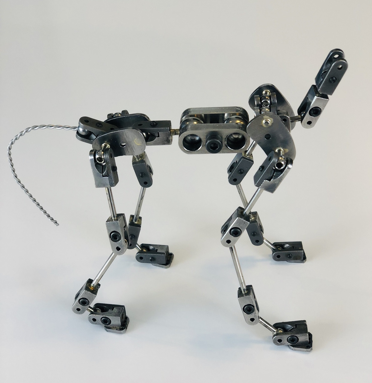 Quadruped PLUS Cinematic Armature Anibild Chimera