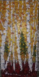 Birch trees in Autumn, soft leaves in deep yellow and burnt orange, touched with hints of metallic , with a crimson bed of leaves and douglas fir
