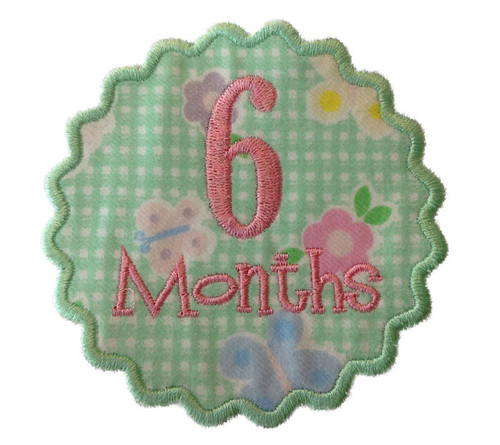 Monthly Onesie Applique Machine Embroidery Designs