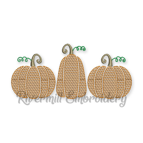 Pumpkins Pumpkin Trio Sketch Machine Embroidery Design