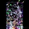 LED Fairy Lights 33 feet 100 LED LIGHTS- Dual power (Battery /USB) Multi Color
