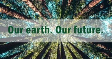 Shop Our Eco-Friendly Favourites Now!