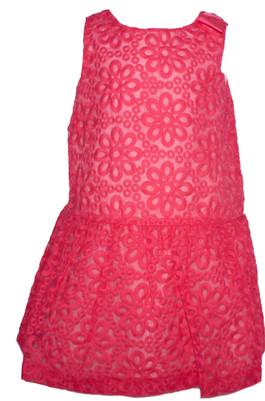 Toddler Girl  Pink Organza Dress