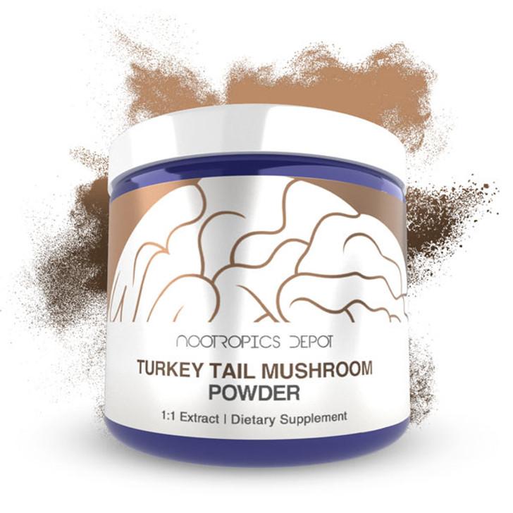 Turkey Tail Mushroom Extract Powder | Whole Fruiting Body | Trametes versicolor