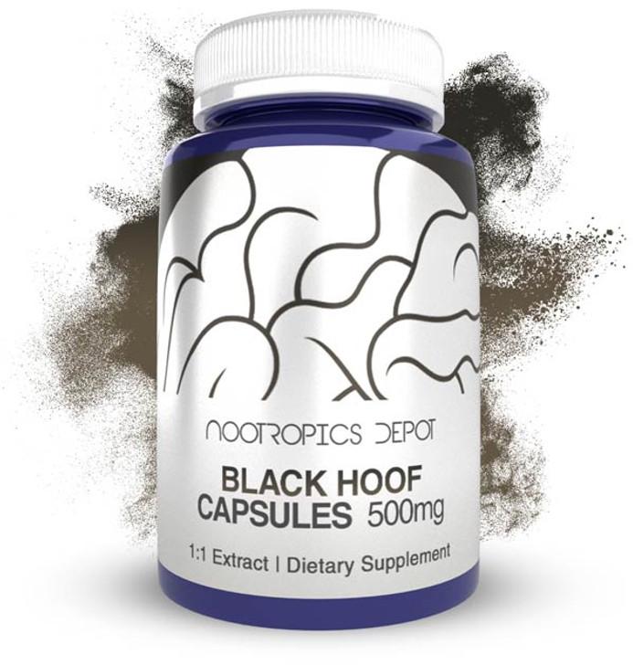 Black Hoof Mushroom Capsules | 500mg | Whole Fruiting Body | Phellinus linteus