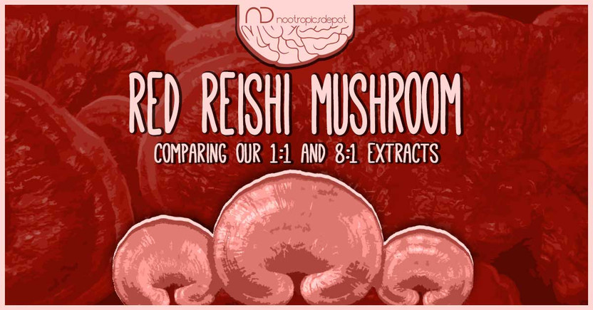 Which is the Best Red Reishi Mushroom Extract For You