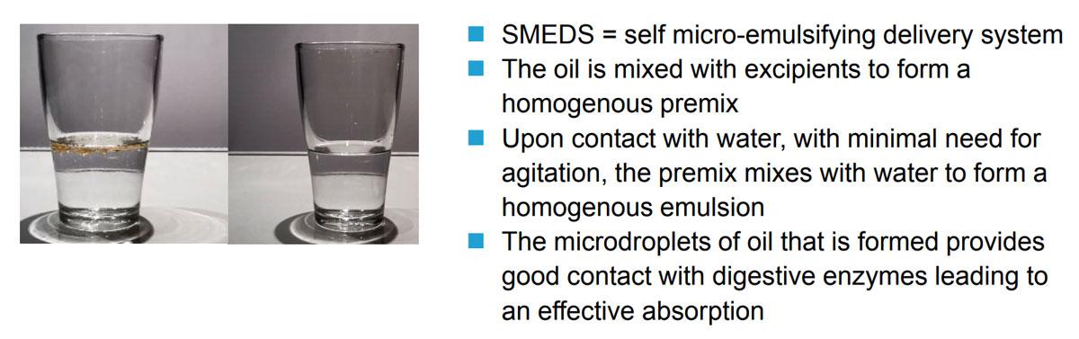 accelon-fish-oil-smeds.jpg