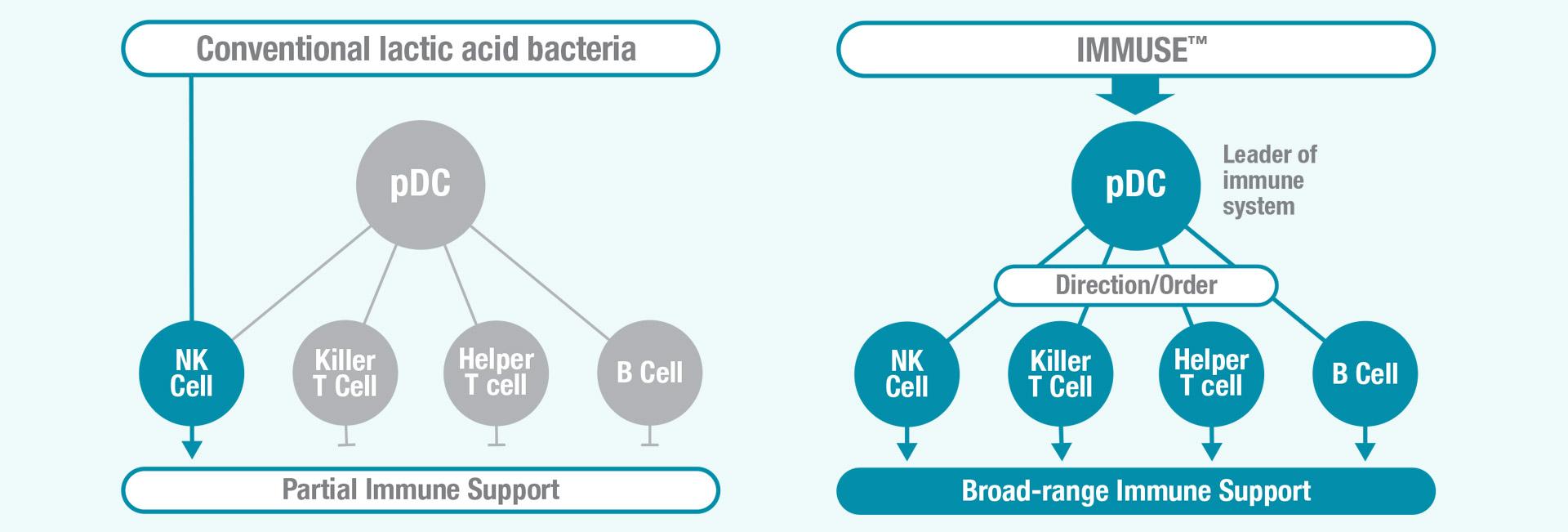 Immuse vs. Conventional Lactic Acid Bacteria