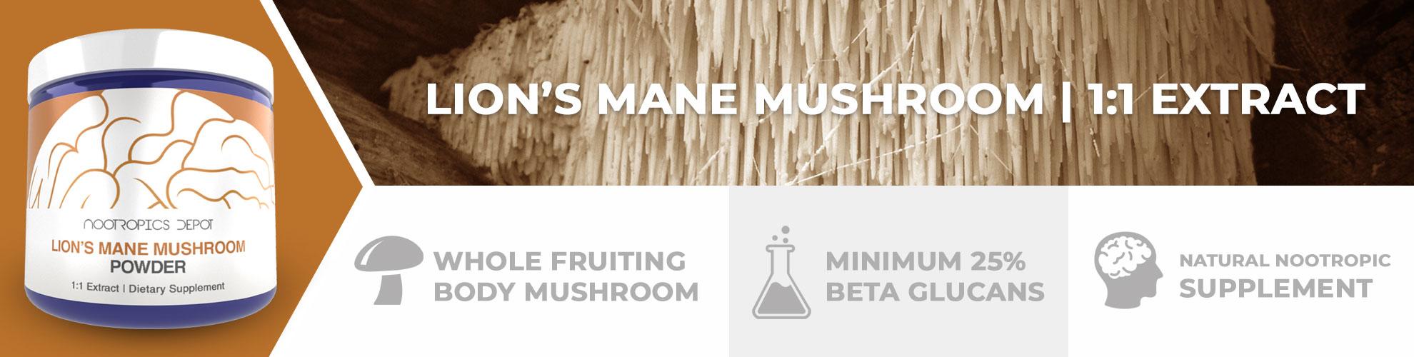 buy lion's mane mushroom extract powder  hericium erinaceus