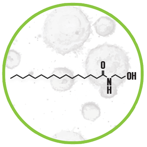 Palmitoylethanolamide