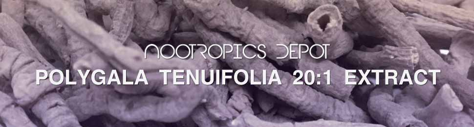 Polygala Tenuifolia Powder