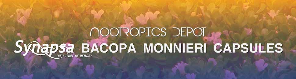 Synapsa Bacopa Monnieri Capsules