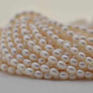 Pearl Rice Beads