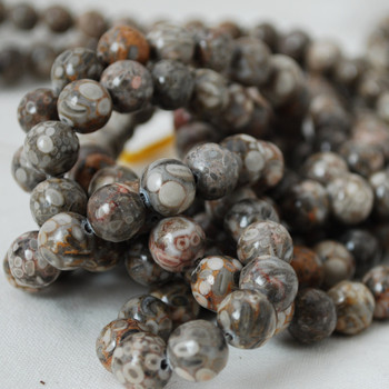 High Quality Grade A Natural Fossil Jasper Gemstone Round Beads 4mm, 6mm, 8mm, 10mm sizes