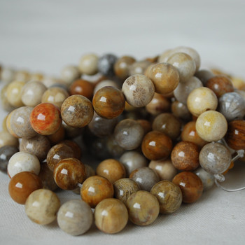 High Quality Grade A Natural Fossilized Coral Gemstone Round Beads 4mm, 6mm, 8mm, 10mm sizes