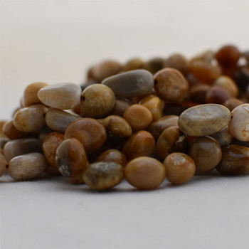 "High Quality Grade A Natural Fossil Coral Semi-precious Gemstone Pebble Tumbledstone Nugget Beads - approx 7mm - 10mm - 15"" long strand"