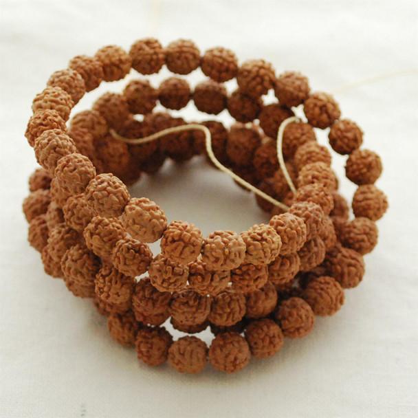 Natural Indonesian 5 Faced Muhki Rudraksha Seed Round Beads - 108 beads - Mala Prayer Beads - 8mm
