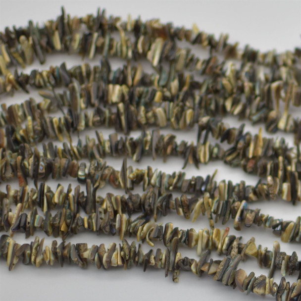 "High Quality Grade A Natural Abalone Semi-precious Gemstone Chips Nuggets Beads - 5mm - 8mm, approx 15.5"" Strand"