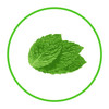 Natural Fresh Mint Flavour 30 ml
