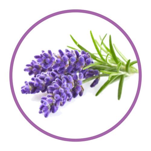 Natural Lavender Flavour 30ml