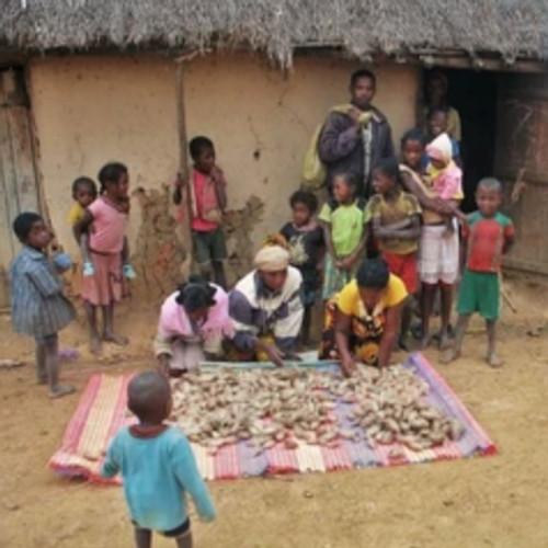 Ta'na'na Silk Cocoon Baskets from Madagascar