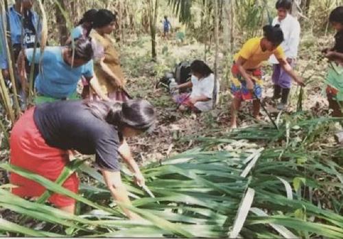 Spirit Weavers: Wounaan Basket Makers