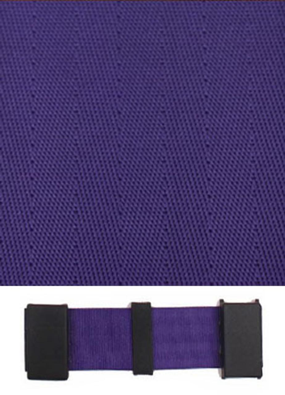 2010 Purple with Black Plastic Trim