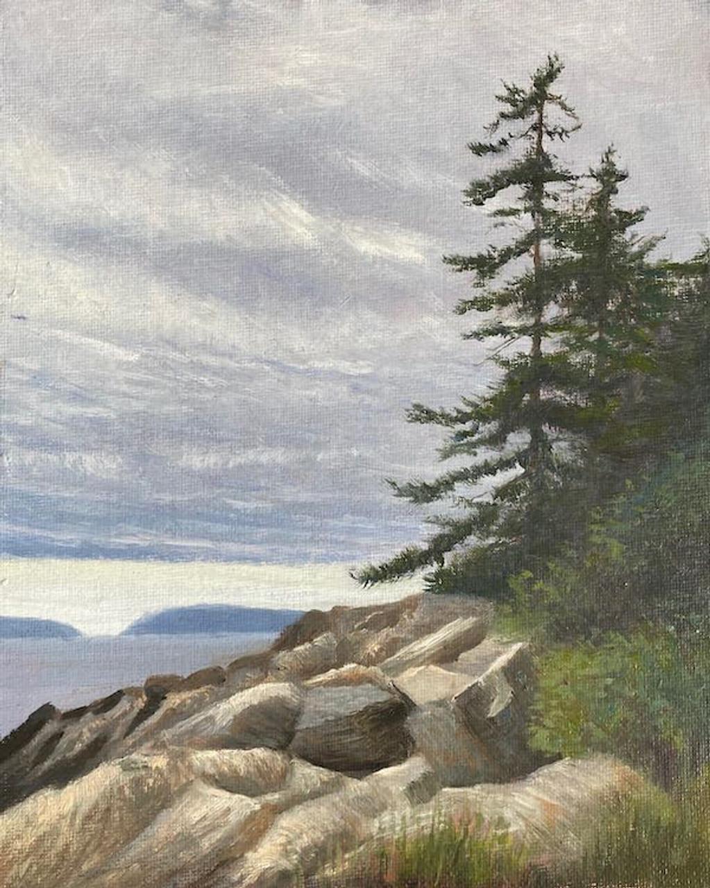 Marshall Point Spruce