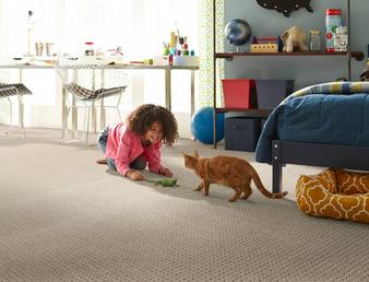 Phenix Deja Vu Pet Protect Carpet with Stainmaster