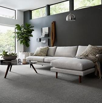 Karastan Delicate Path Smartstrand Silk Carpet