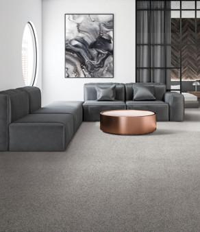 Karastan Magnetic Allure Nylon Carpet
