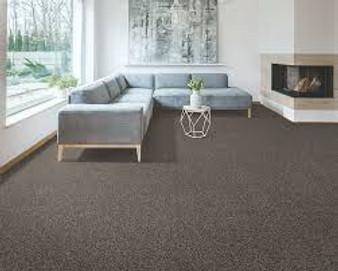 Karastan Mission Ridge Nylon Carpet