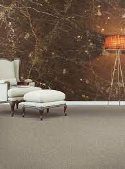 Karastan Enhanced Beauty Smart Strand Carpet